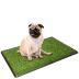Potty Trainer 2 - Tapete wc para cães